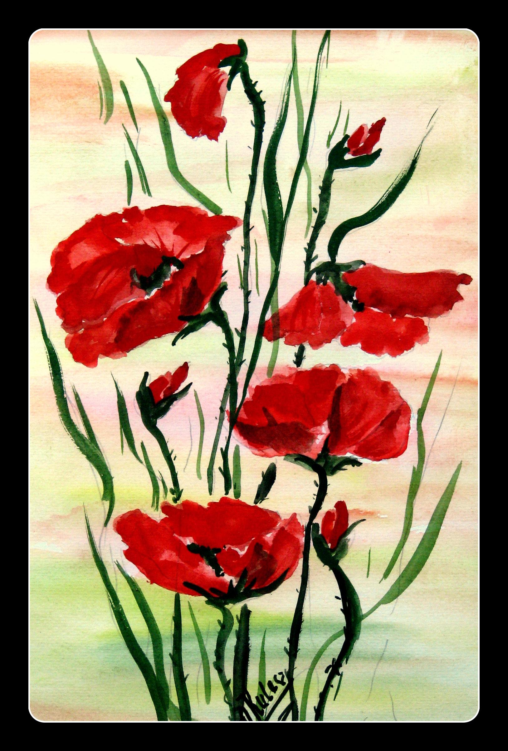 ą polskie kwiaty, które wyrosły pod polskim niebem